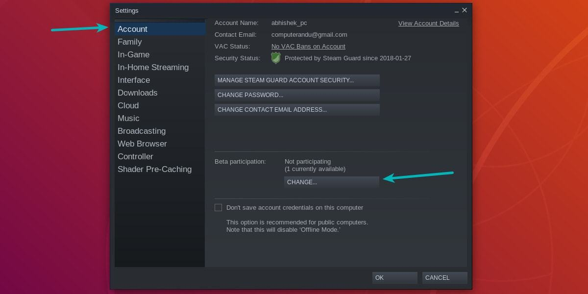 Enable beta feature in Steam Linux