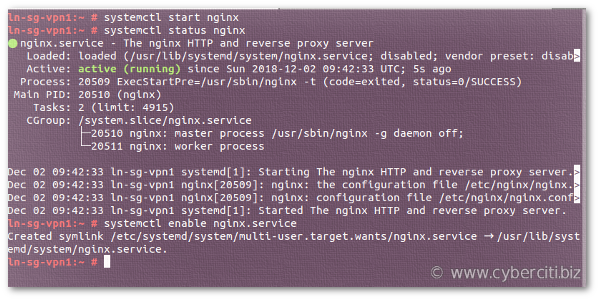 How to start, stop, restart the Nginx on OpenSUSE Linux server