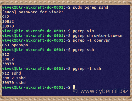 Given a search term, Ubuntu Linux pgrep command shows the process IDs that match it