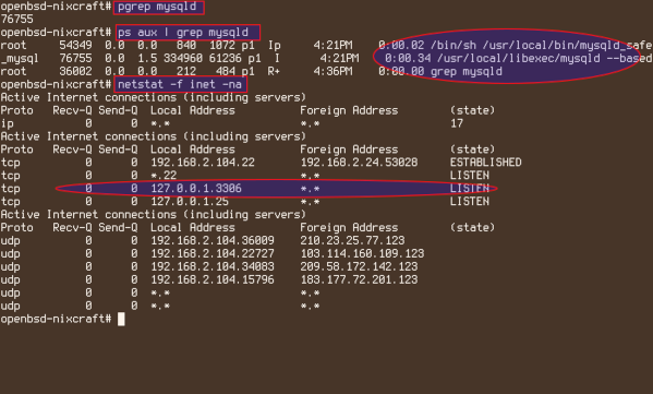 How to insall MariaDB on OpenBSD and verify it